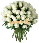 Buchet 49 trandafiri albi