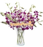 Buchet orhidee