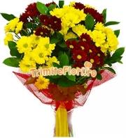 Crizanteme in contrast