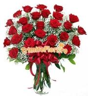 Trandafiri sofisticati